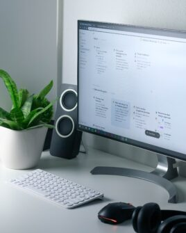 clean and moder workspace with a plant in a pot for decoration